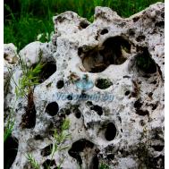 Камень-валун пещеристый белый