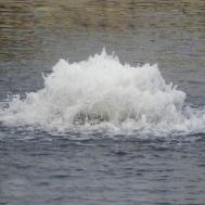 Плавающие фонтан - аэратор 8400EAF