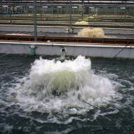 Плавающие фонтан - аэратор 3.3EHAF
